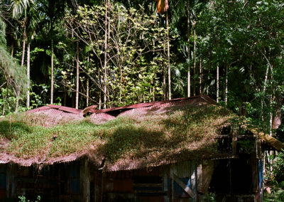 India, Andaman Islands, Abandoned houses